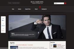 BullsAndBears — бизнес шаблон для WP