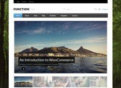 Function - тема для блога или же интернет-магазина