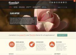 Cameleon  - стильная тема для блога WP
