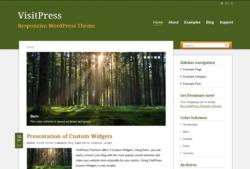 Шаблон VisitPress