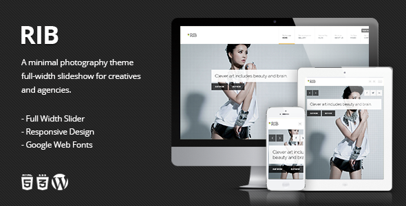 RIB - Responsive Photography WordPress Theme