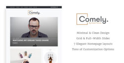 Comely - Responsive WordPress Blog Theme