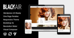 Blackair - One Page Theme for Hair & Beauty Salon